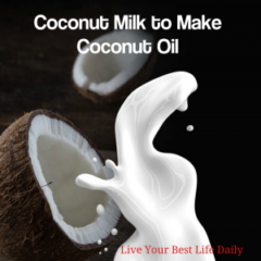 best vegan fat for weight loss coconut oil
